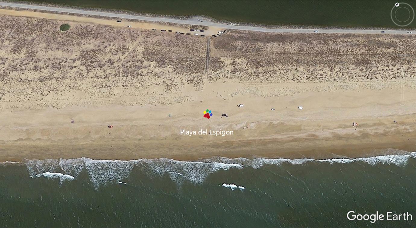 Vista aérea de la playa del Espigón