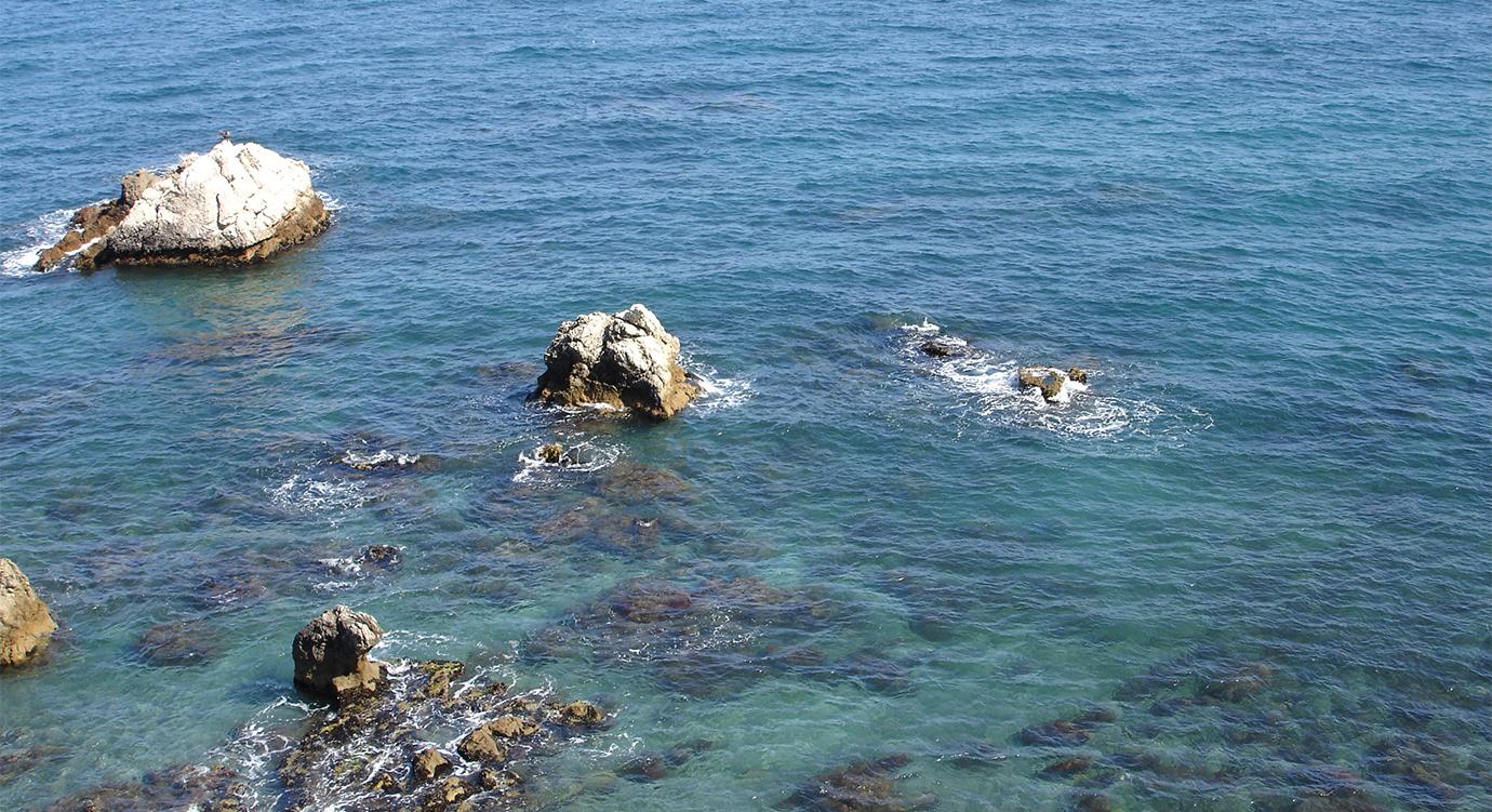 Torre de la Sal S. XVI - Playa Piedra Paloma