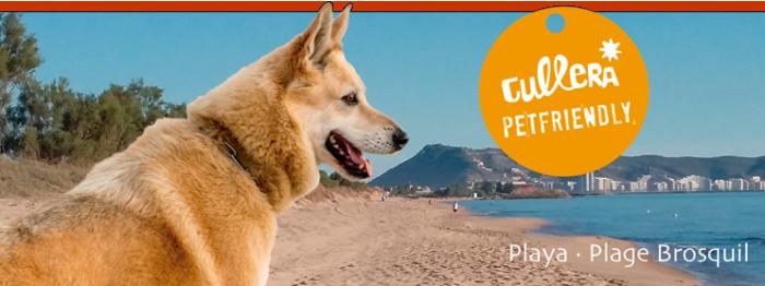 Cartel Playa El Brosquil - Cullera
