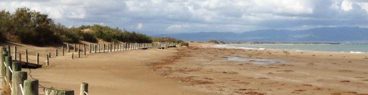 Vista - Playa Bassa de la Arena