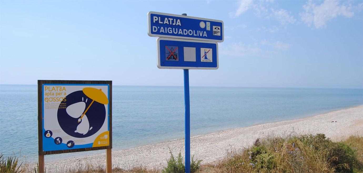 Vista - Playa D'Aiguaoliva