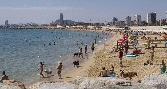 Vista Playa de Llevant - Barcelona