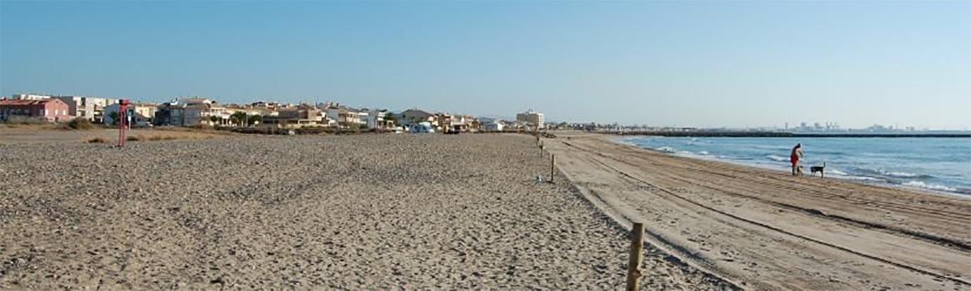 Playa canina - Playa de la Torreta