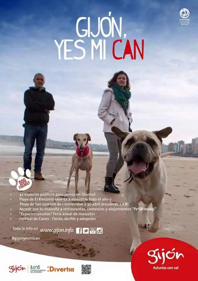 Playas para perros Gijón yes mi can
