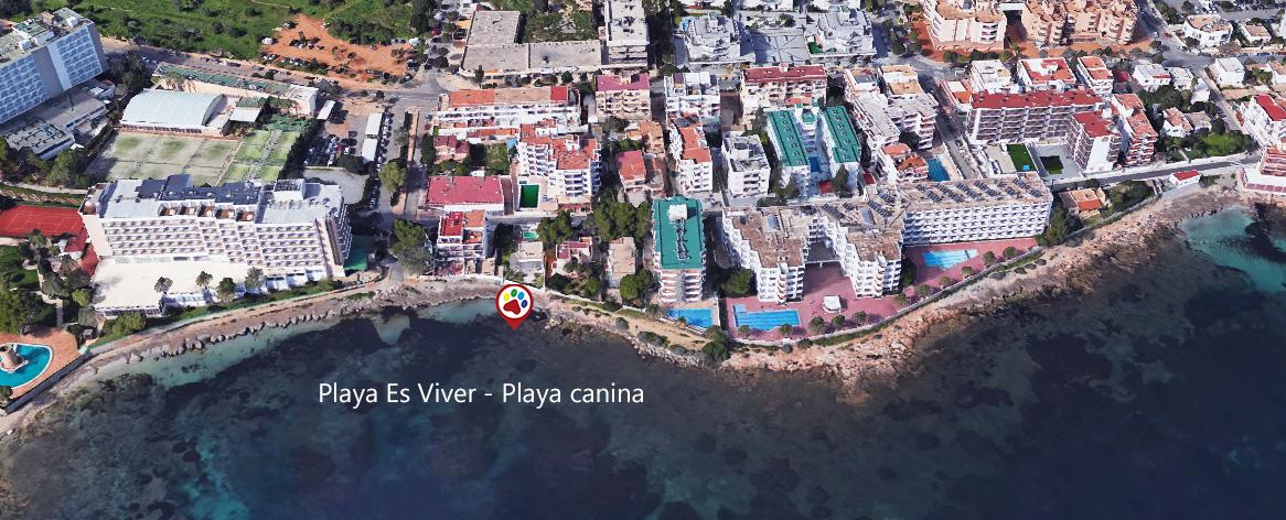 Playas para perros en Ibiza - Playa canina - Playa Es Viver