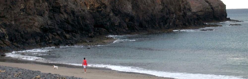 Playas para perros en Lanzarote - Playa las Coloradas - Plya canina