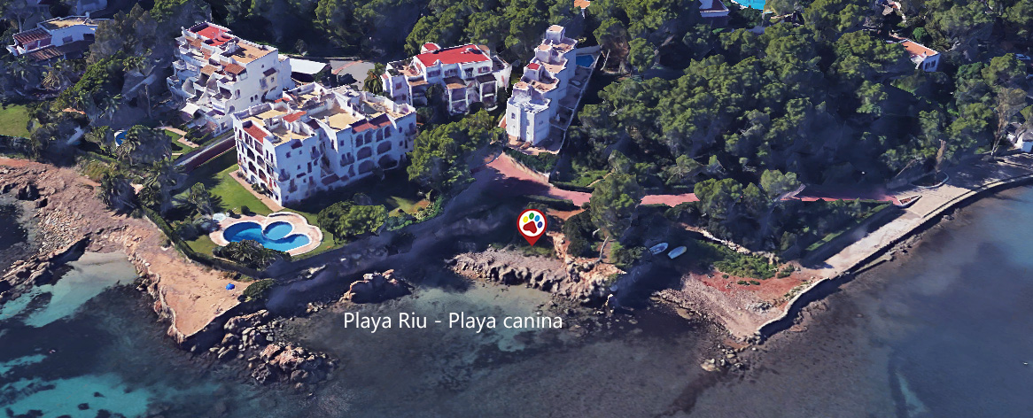 Playas para perros en Ibiza - Santa Eurelia des Riu - Ibiza - Playa des Riu