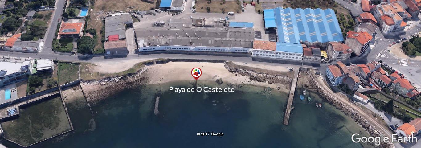 Playas para perros - Playa de O Castelete - Vilagarcia de Arousa - Pontevedra